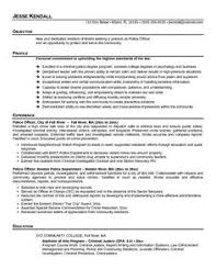 Sales Representative Resume Example by Insurance Sales Representative Resume Http Www Resumecareer