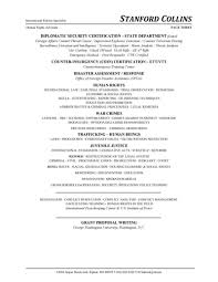 resume template for lawyers policy consultant resume diplomatic policy consultant resume