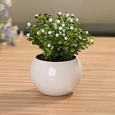 small potted plants 2018 mini small white ball cup flower pot bonsai simulation plants