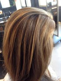 high and low highlights for hair pictures medium brown highlights on light hair