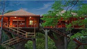 famous tree houses tree houses which are some of the most beautiful treehouses ever