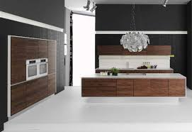 luxury minimalist modern kitchen with glass cabinets home ideas