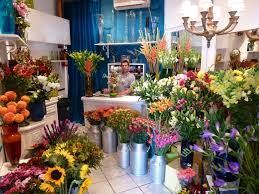 go flowers flowers to go vallarta shopping retail