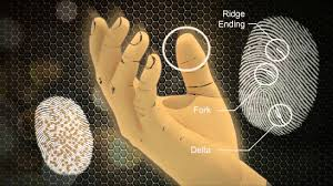 biometric ids youtube