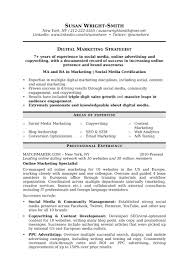 Social Media Resume Examples by Social Media Resume Sample Template Examples