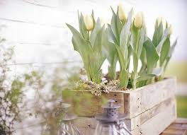 Spring Decorations For The Home 36 Best Wohnen U0026 Garten Images On Pinterest Live Garden And