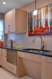 accessible kitchen cabinets monsterlune