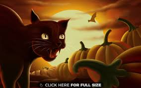 black cat halloween background page 5 of halloween wallpapers photos and desktop backgrounds