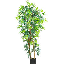 Potted Patio Trees by 7 Foot Biggy Style Bamboo Tree Potted 5191