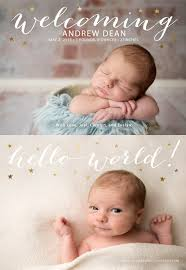 baby announcements newborn birth announcements two bees photography