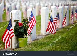 Military Flag Frame Us Military Cemetery Flying Us Flags Stock Photo 81417916