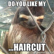 Best Sloth Memes - funny sloth memes memeologist com