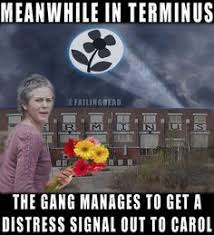 Carol Twd Meme - image result for the walking dead look at the flowers meme