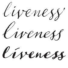 our favorite typefaces of 2015 u2013 typographica