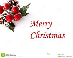 christmas card christmas card stock image image of greenery bough 17035645