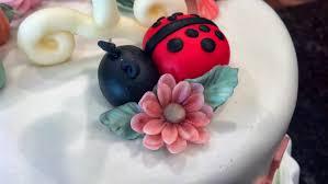 my daughters 1st birthday cake chocolate cake with raspberry white