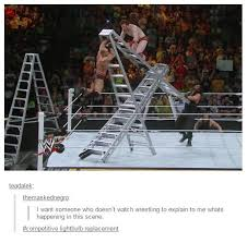 Ladder Meme - i want someone who doesn t watch wrestling to explain to me whats