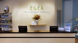 egea the north shores wellness spa evanston il groupon
