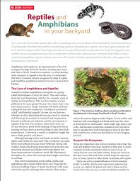 Backyard Reptiles Wolf Xpress Print And Copy Services Extension Publications
