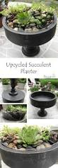 Indoor Garden Containers - flea market planter u2013 succulent planter from goodwill succulents