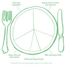 grab 5 curriculum pack blank balance of good health plate