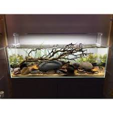Aquascape Store Gallery Moment Greenaqua Showroom Gallery Hungary Ada