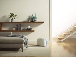 Home Design And Decor Shopping Recensioni by The Best Place For A Humidifier