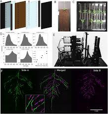 glo roots an imaging platform enabling multidimensional