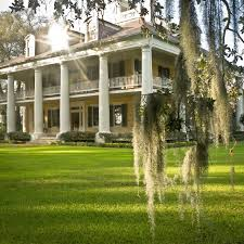 multiple plantation estates in louisiana of the stately
