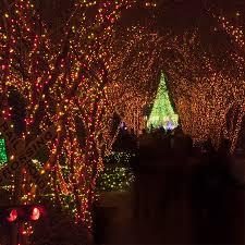Christmas Lights Etc Wrapping Trees With Christmas Lights
