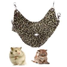 Hamster Bed Discount Cozy Colorful Hamster Bed Squirrel Supplies Cute Pet Soft