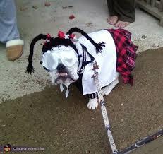 Abby Ncis Halloween Costume Abby Sciuto Ncis Forensic Scientist Dog Costume