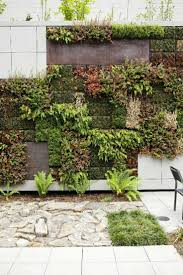 Garden Wall by 47 Best Green Walls Images On Pinterest Vertical Gardens