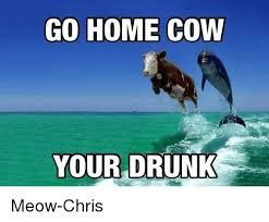 Cow Memes - 25 best memes about miserable cow miserable cow memes