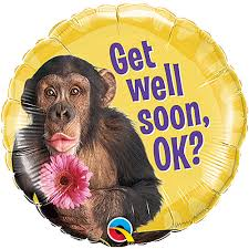 get well soon and balloons 18 get well soon chimp with flower balloon 17 18 get well