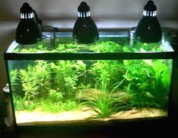 10 gallon planted tank led lighting planted tank lighting faq aquatic essentials by myaquarium