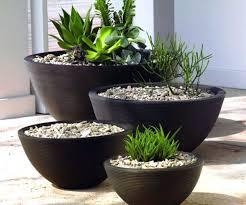 Pot Garden Ideas Pot Planting Ideas Photo Of Planting Ideas For Patio Pots Garden