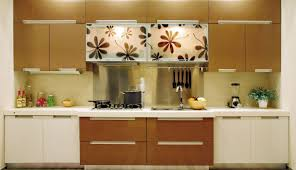 Kitchen Cabinets Washington Dc Kitchen European Kitchen Cabinets Entertain European Kitchen