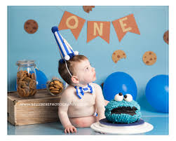 cookie monster cake smash theme for boys cake smash pinterest