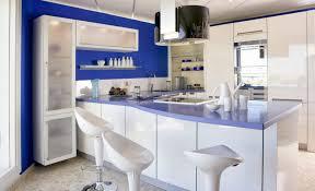 Grey Kitchen Walls With Oak Cabinets Kitchen Contemporary Oak Cabinets Kitchen Ideas What Color
