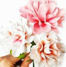 carnation flowers carnation paper flower templates catching colorlfies