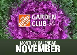 gardening calendar for november garden club