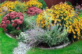 native plants for rain gardens creating a rain garden wolf creek company
