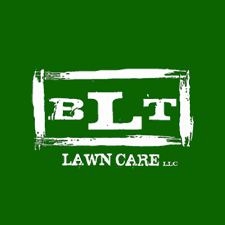 Landscaping Company In Miami by 17 Best Miami Lawn Service Companies Expertise