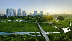 pauldouglas 1506993776 sustainable city gif