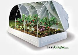 guarden greenhouses and raised beds