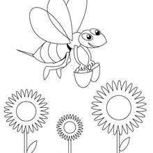 bee coloring pages drawing kids reading u0026 learning free