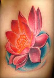 amazing pink lotus flower designs pink