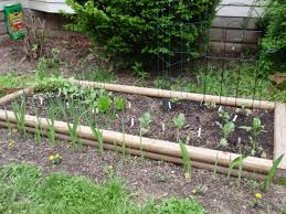 raised bed vegetable garden layout all about diy raised bed part vegetable garden layout for small