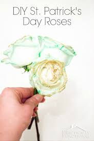 s day roses how to make green roses for st s day
